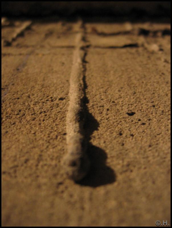 mur_beton