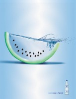 natural mineral melon